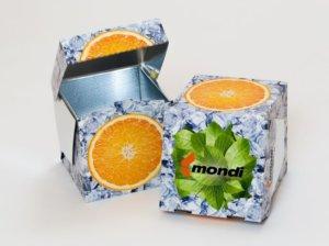 mondi-icebox
